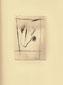 Opere Grafiche - Stampe - Libro dei semi