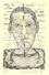 Ritratto del poeta Beduski, 1938, 88x138