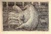 Scrofa con lattonzoli, 1955, 182x116