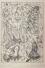 Storia del doge, 1968, 119x169